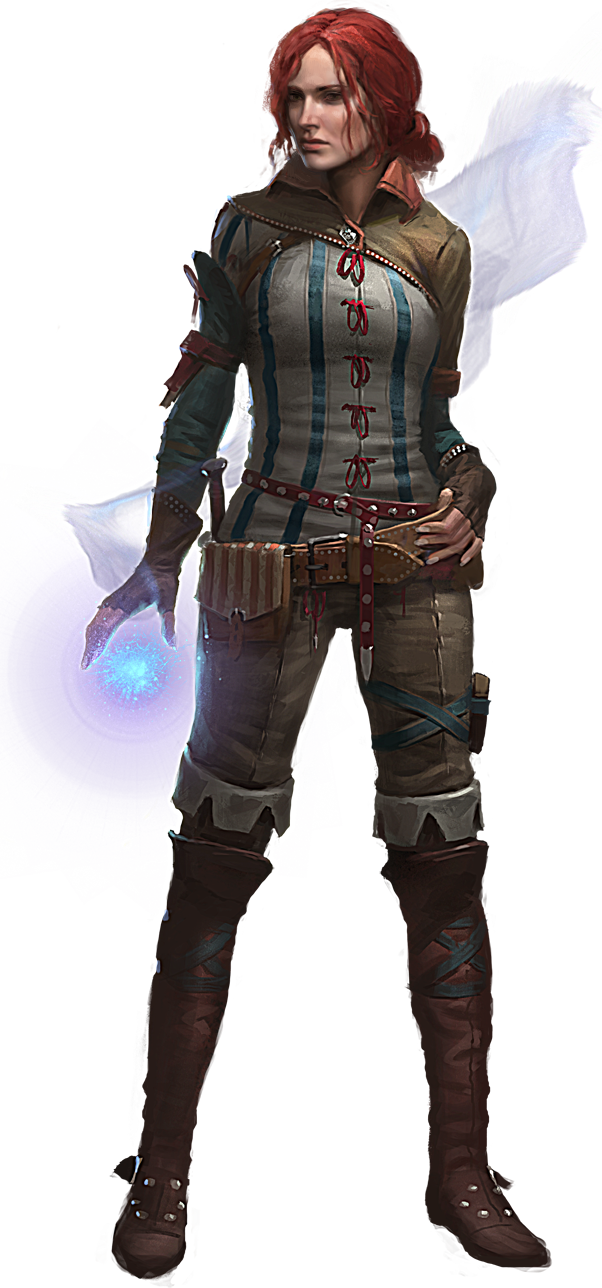 The Witcher PNG, the witcher PNG image, la imagen PNG de brujo, das Hexer-PNG-Bild