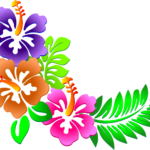 Flor – Hawaii Flor PNG