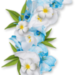 Flores PNG