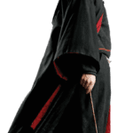 Duelo Rony Weasley Harry Potter PNG