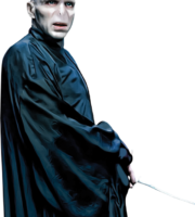Lord Voldemort Harry Potter PNG