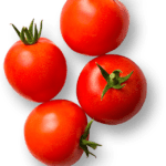 Foto Tomate PNG