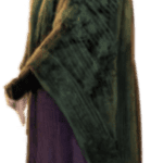 Minerva Mcgonagall Harry Potter PNG