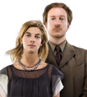 Remo and Tonks Harry Potter PNG