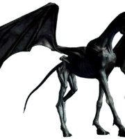 Thestral Drawing Harry Potter PNG