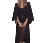 Figura Ashley Benson PNG