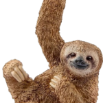 Clipart Sloth PNG